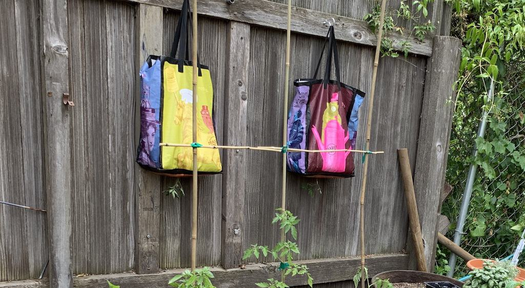 grocery bags in my garden with small tomato plants sticking out of them