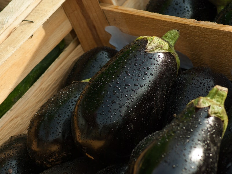 eggplants in a crate