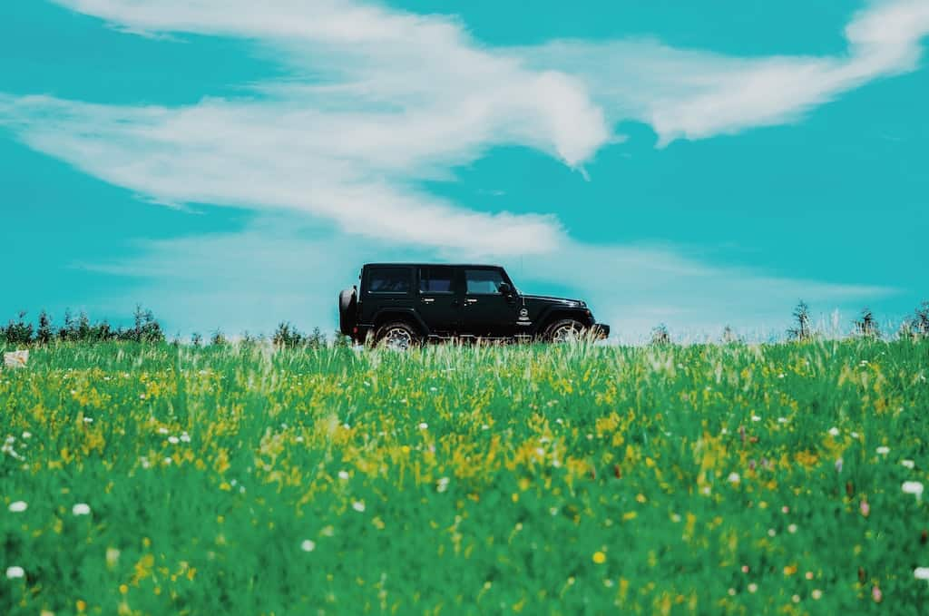 a car in the middle of a field