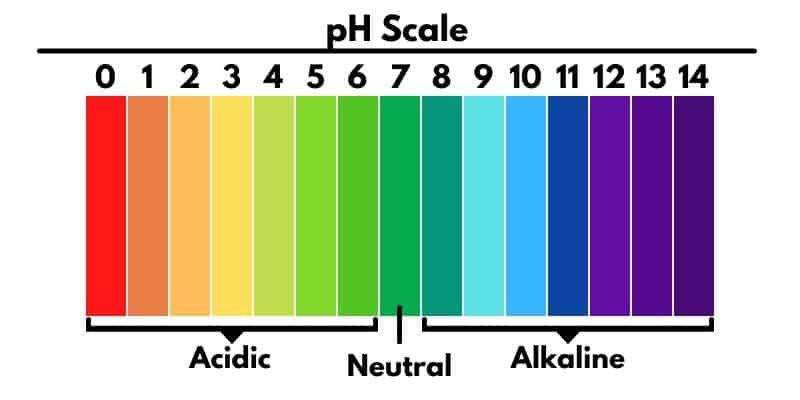 ph scale couch to homestead