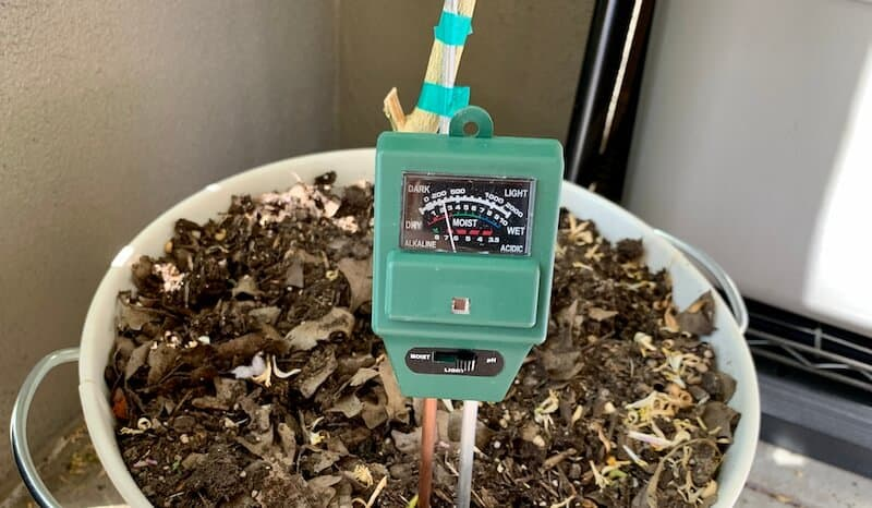 my moisture, ph, and light meter for my Meyer lemon tree