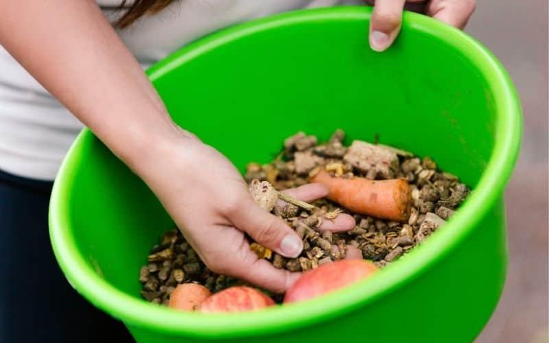 organic fodder and pellets