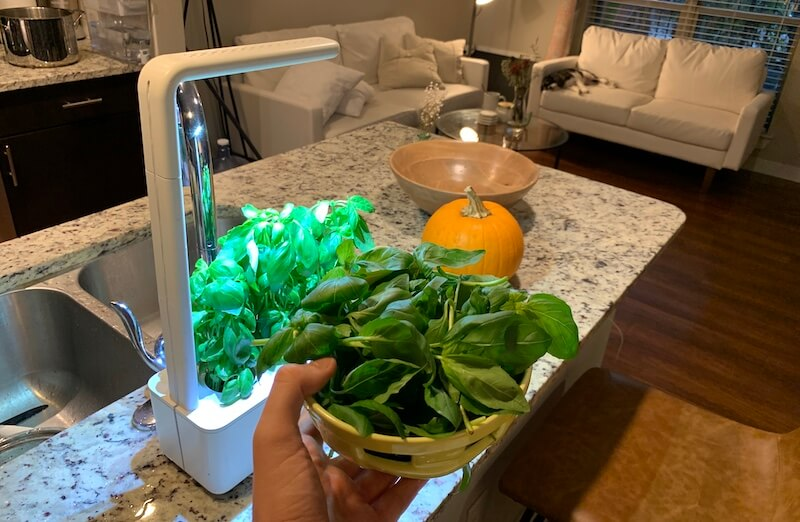 my click and grow smart garden